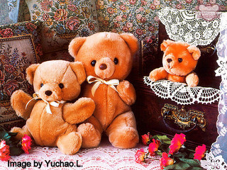 Three Teddies