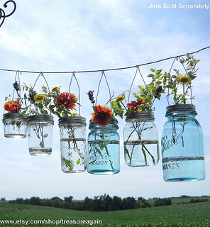 Flowers in Hanging Jars