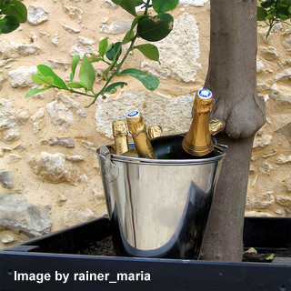 Bucket of Champagne ready for a special picnic