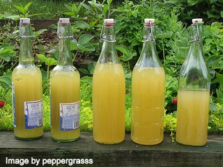 Bottles of homemade lemonade